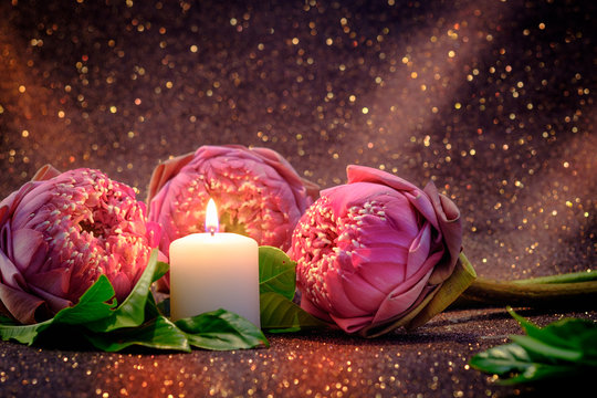 Vintage image style on pink  water lily or lotus flower folding thai style with white candle light  for worship with red bokeh background