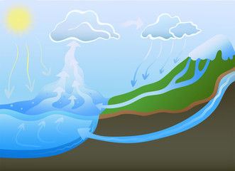 Water cycle in nature. Vector schematic illustration.
