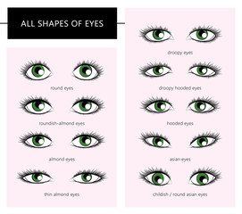 shapes of eyes