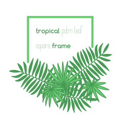 Square copyspace frame with palm leaves composition