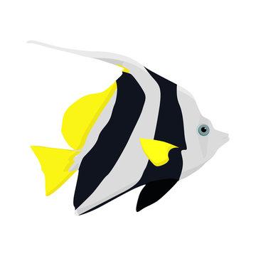 Tropical fish. Black and yellow fish