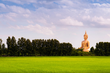 Great Buddha Statue and rice field, Ang Thong, Thailand