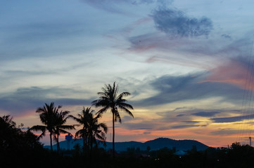 Coconut palms silhouette on dramatic clouds sky sunset background.