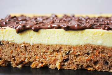 carrot cheesecake with chocolate