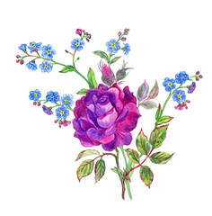 Bouquet of purple roses and forget-me-nots, watercolor drawing on white background, isolated with clipping path.