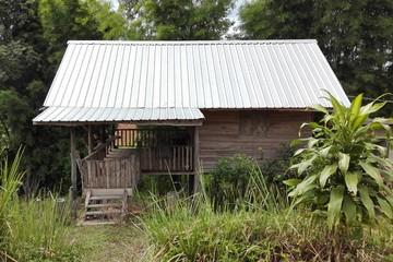 old wooden hut in dark forest