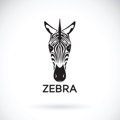 Vector of an zebra face on white background. Wild Animals.