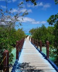 Holzsteg auf Kuba, Santa Lucia, Cayo Coco
