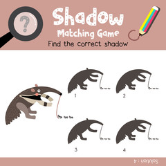 Shadow matching game of Anteater animals for preschool kids activity worksheet colorful version. Vector Illustration.