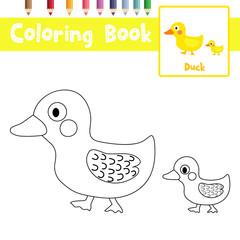 Coloring page of mother and little Duck animals for preschool kids activity educational worksheet. Vector Illustration.