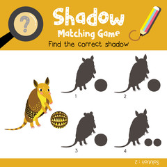 Shadow matching game of Standing armadillo with ball animals for preschool kids activity worksheet colorful version. Vector Illustration.