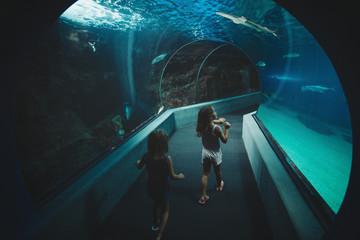 Young girls - sisters - exploring aquarium tunnel tank