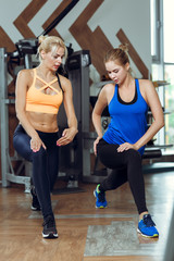 Young athletic woman doing exercises with personal fitness trainer