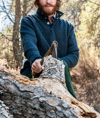 Bearded man chopping wood in the forest