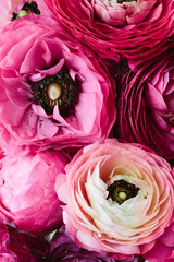 Bouquet of pink ranunculus shot from above