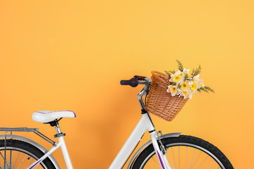Bicycle with basket of beautiful flowers on color background