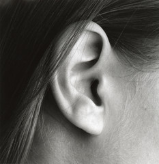 close-up of ear