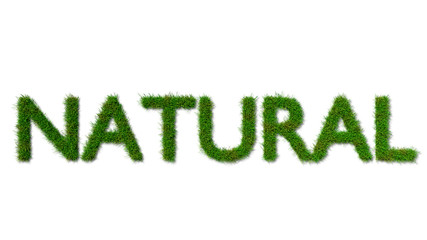 English sign of NATURE made from green grass on white background