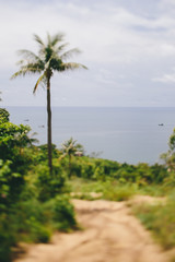 Sand path to sea