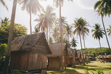 Wooden houses among palms