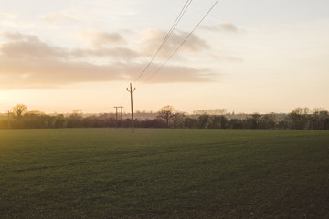 Power lines running through a field at sunset