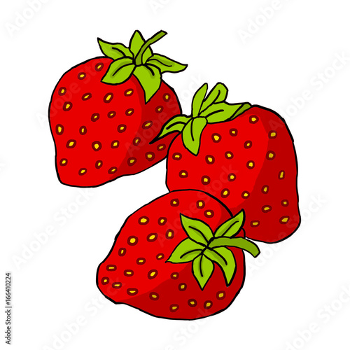 strawberries vector draw stock image and royalty free vector files