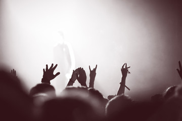 Partying crowd at a concert