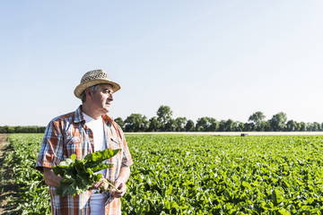 Senior farmer with turnip standing in front of a field Fotoväggar