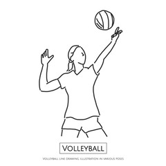 Volleyball line drawing illustration in various poses, line drawing vector illustration graphic design
