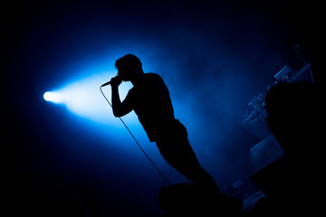 Artist singing in microphone in stage lights Wall mural