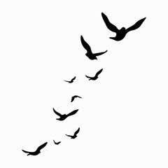 Silhouette of a flock of birds. Black contours of flying birds. Flying pigeons. Tattoo. Isolated objects on white background.