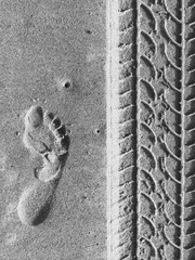 Adult footprint next to tire track in sand