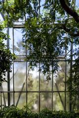 Glass house patterns