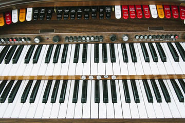 Sweet Organ