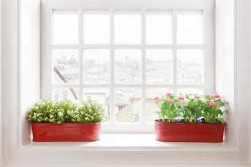 Flower Vases on Windowsill