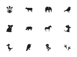 Set Of 12 Editable Zoology Icons. Includes Symbols Such As Kine, Mouse, Crow And More. Can Be Used For Web, Mobile, UI And Infographic Design.