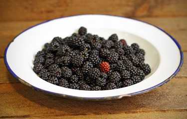 Wild berries in the kitchen