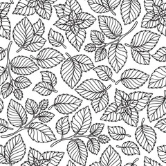 Vector seamless pattern  of mint leaves .