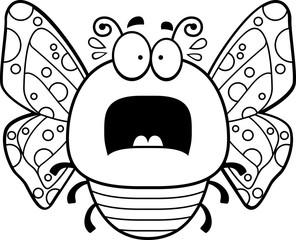 Scared Little Butterfly