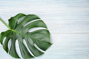 Monstera leaf on wooden background