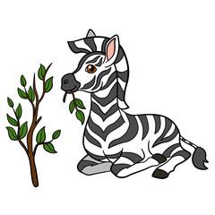 Cartoon animals. Little cute baby zebra eats.