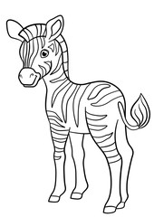 Coloring pages. Little cute baby zebra.