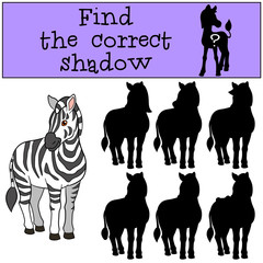Educational game: Find the correct shadow. Cute beautiful zebra.