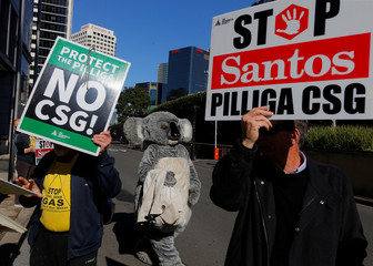 A protester dressed as a koala walks among others with banners against Coal Seam Gas mining in the Pilliga region of rural Australia, outside the venue of the Committee for Economic Development of Australia (CEDA) meeting in Sydney