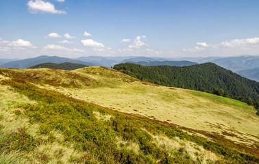 grassy hills of mountain ridge in autumn