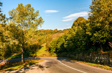 trees by the road in autumn mountainous countryside