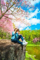 Happy woman traveler take photos by camera with cherry blossoms tree on vacation in spring season..Women traveler use camera take a photo cherry blossoms or sakura in full bloom at Thailand.