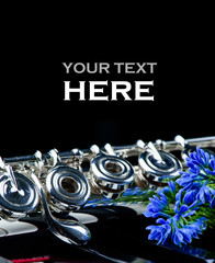 flower,piano keyboard and flute instrument close up with place for your text.