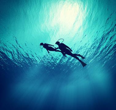 Dives swim under wate