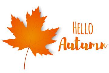 Hello, autumn. Autumn maple leaf isolated on a white background. Vector illustration